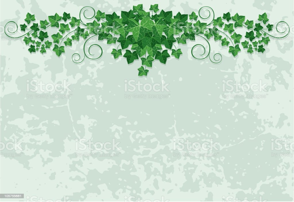 Ivy design for a card or event promo royalty-free stock vector art