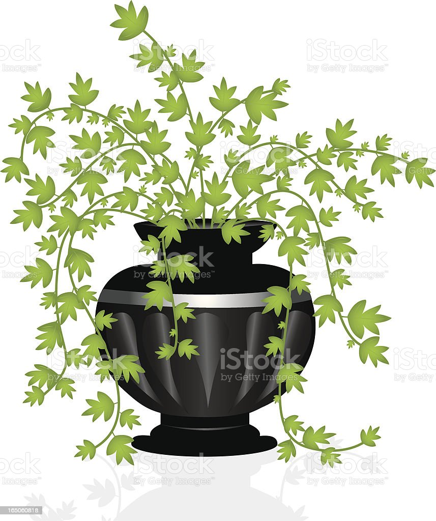 Ivy filled Planter royalty-free stock vector art