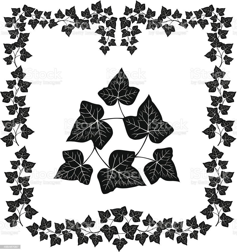 Ivy Frame vector art illustration