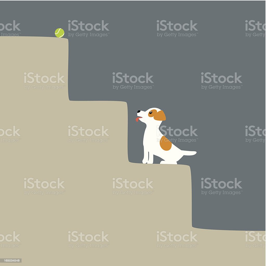 Jack Russell Terrier climbing the stairs for Tennis Ball royalty-free stock vector art