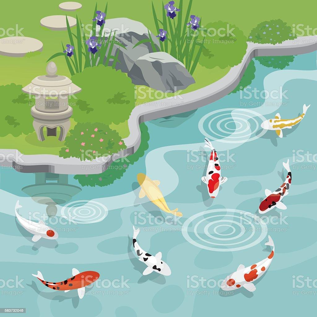japanese garden with koi pond vector art illustration