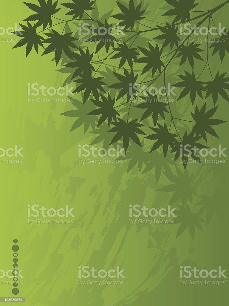 Japanese Maple royalty-free stock vector art