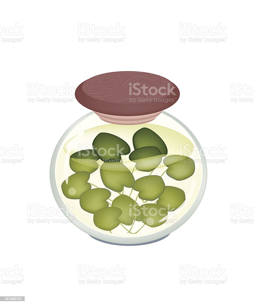Jar of Pickled Common Frogbit Plant vector art illustration