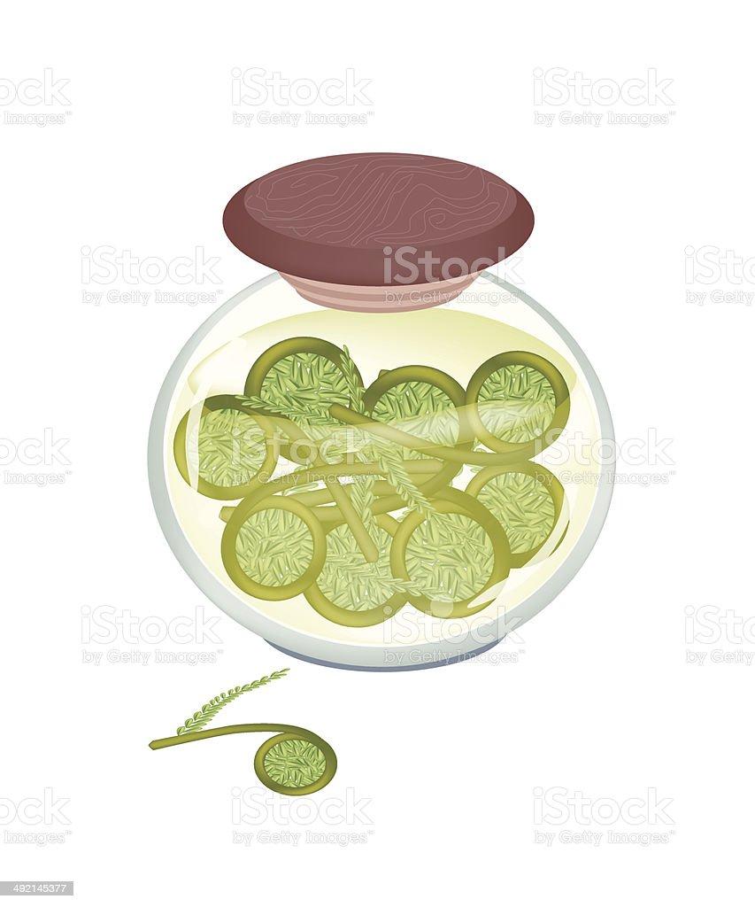 Jar of Pickled Green Fiddleheads Ferns vector art illustration