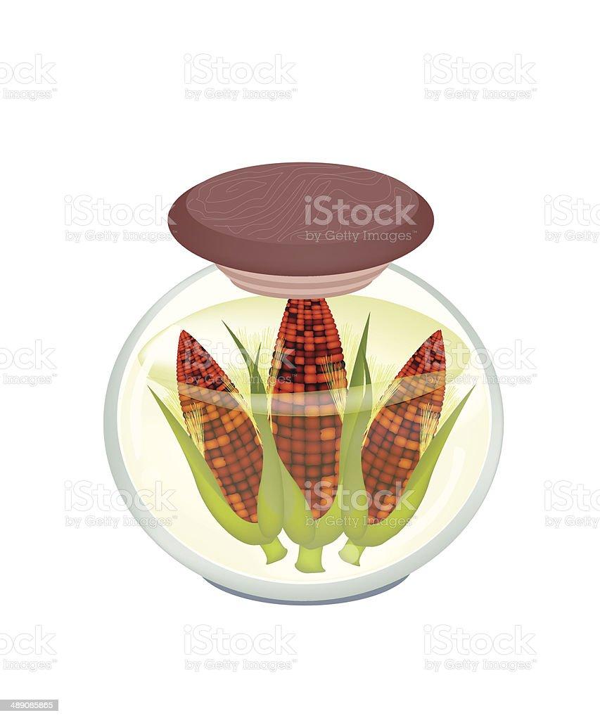 Jar of Purple Sweet Corns in Brine royalty-free stock vector art