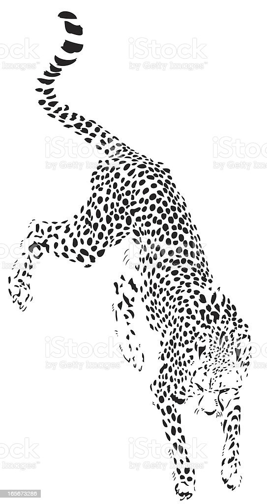 Jumping cheetah illustration royalty-free stock vector art