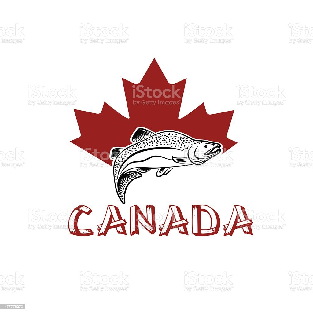 jumping fish on the background of canadian maple leaf vector art illustration