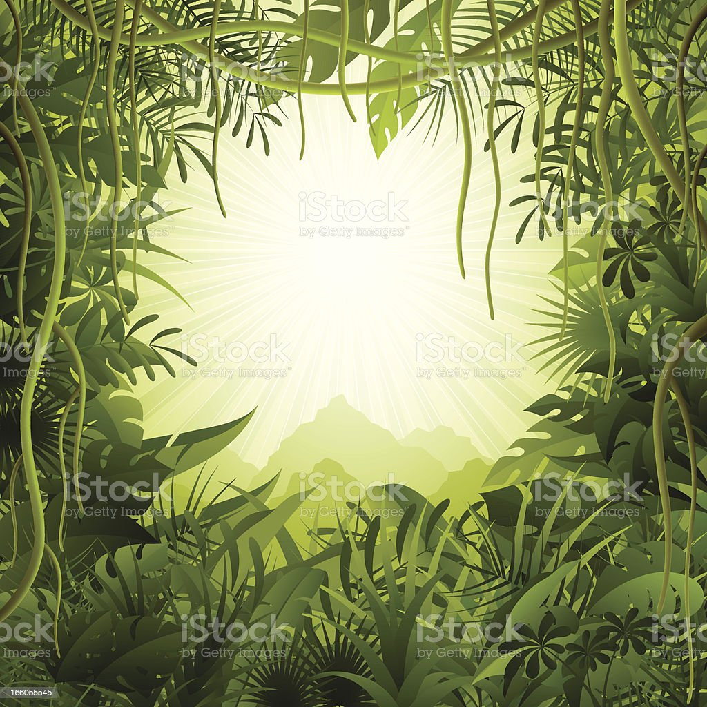 Jungle background vector art illustration