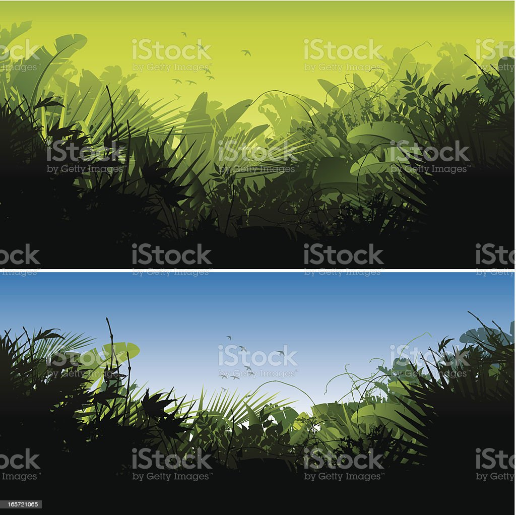 Jungle backgrounds vector art illustration