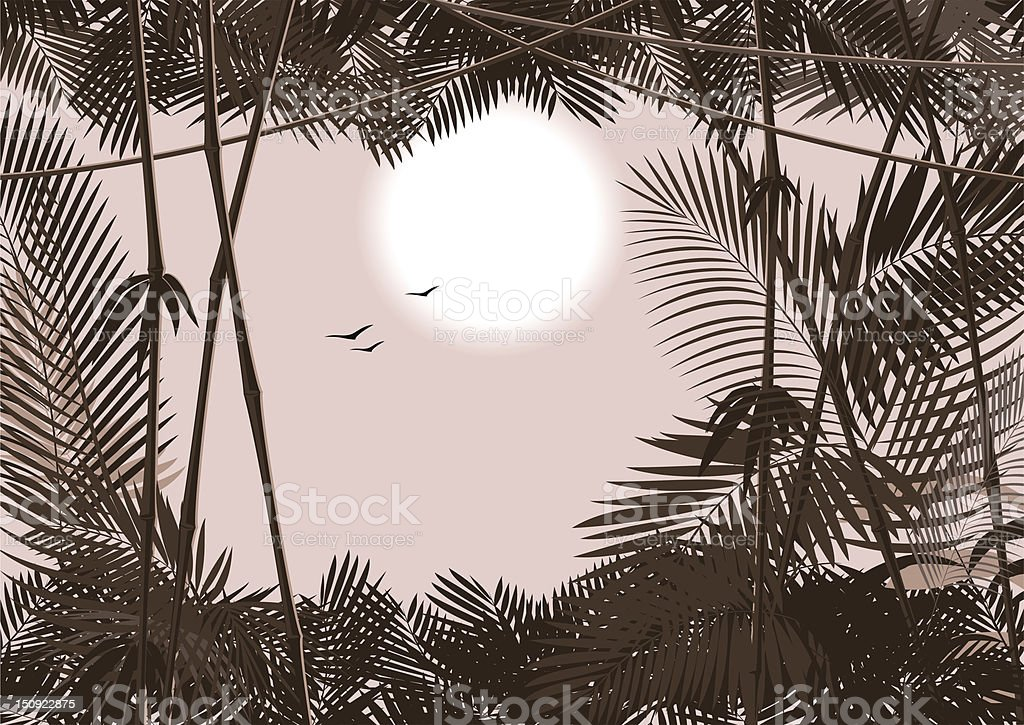 jungle forest royalty-free stock vector art