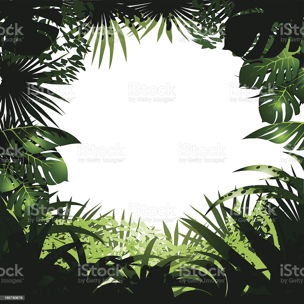 Jungle Frame vector art illustration
