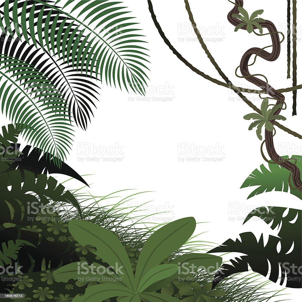 Jungle Leaves vector art illustration