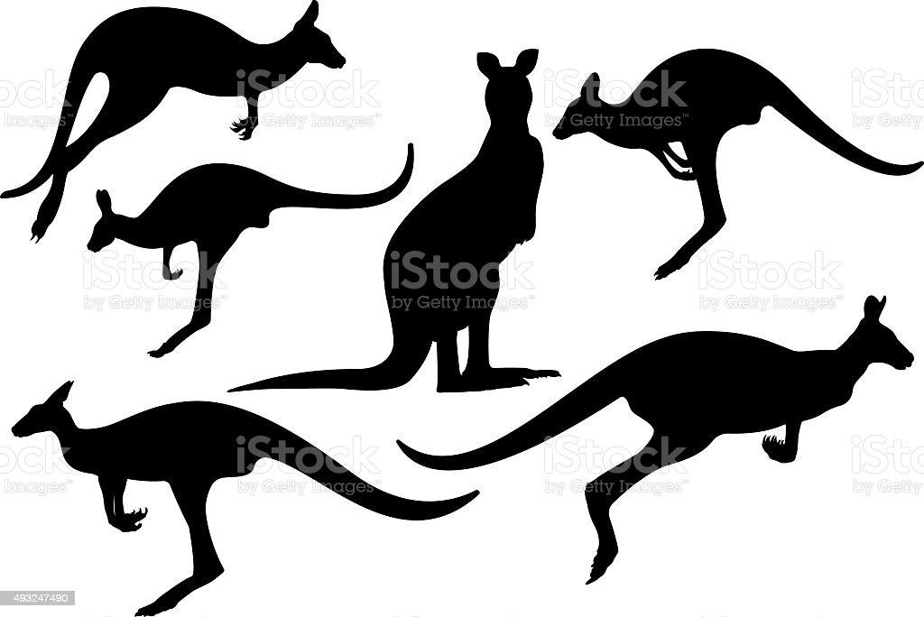 Kangaroos silhouette vector art illustration