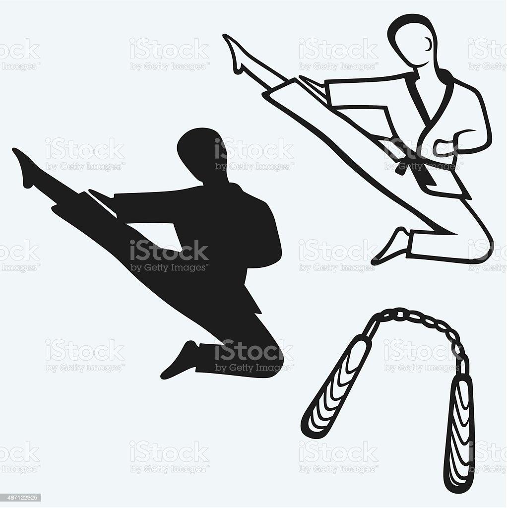 Karate male royalty-free stock vector art