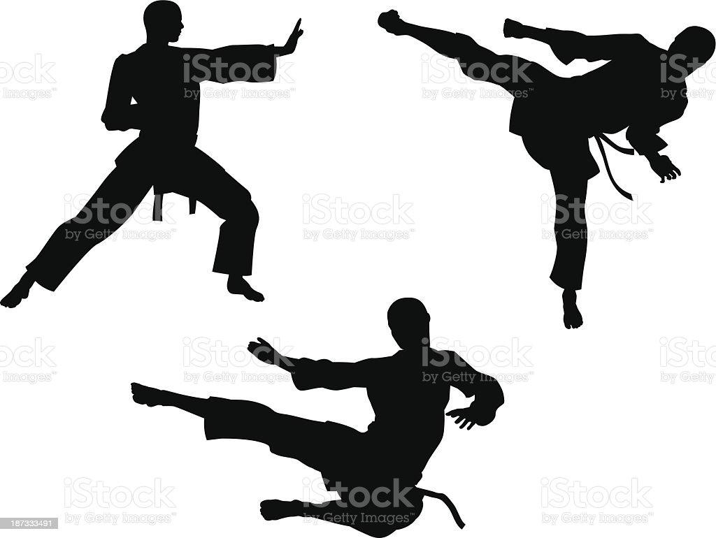 Karate Martial Art Silhouettes vector art illustration