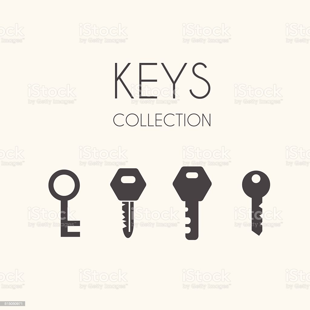 Key icons, flat style vector art illustration