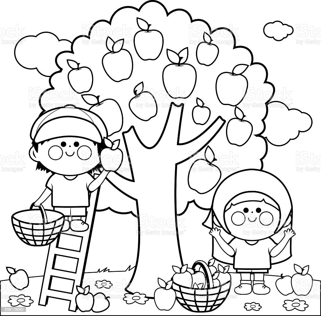 Coloring book page apple tree - Coloring Season Summer Apple Fruit Apple Tree Kids Harvesting Apples Coloring Book Page