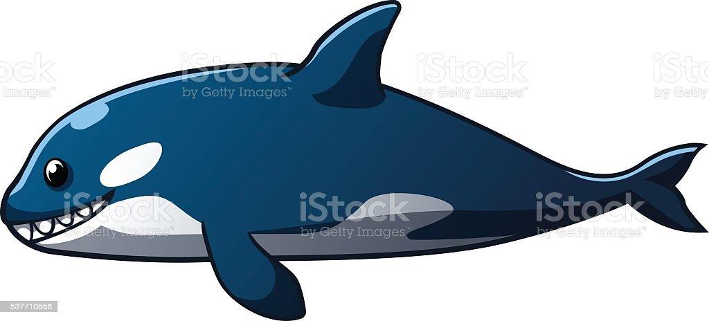 Killer whale royalty-free stock vector art
