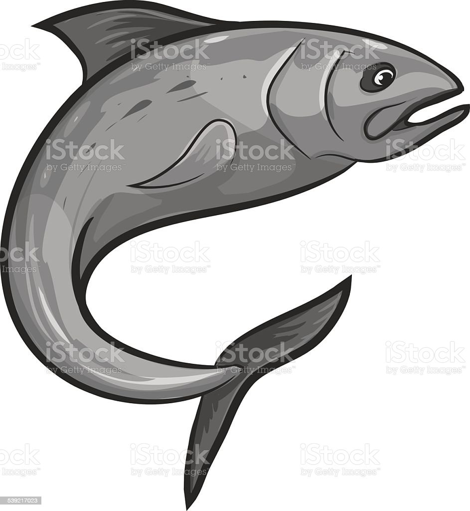 King Salmon vector art illustration