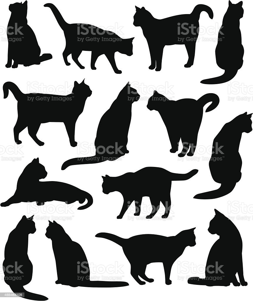 Kitty Cats vector art illustration