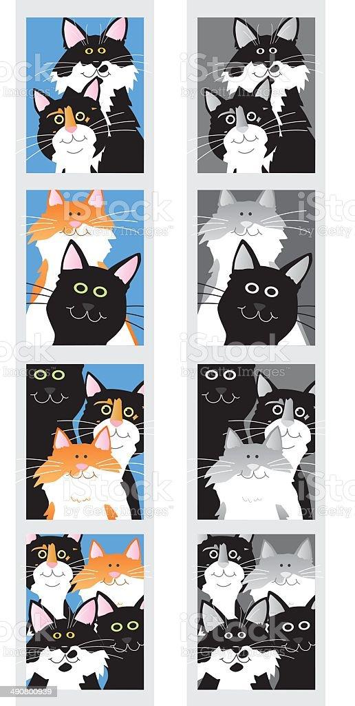 Kitty Photo Booth vector art illustration