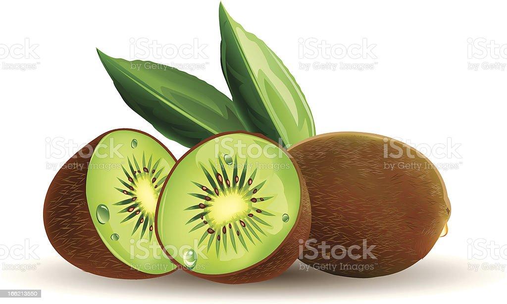 kiwi fruit with leafs vector art illustration