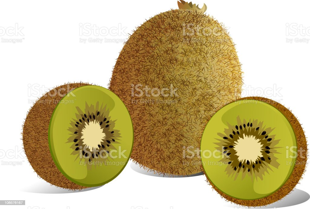 Kiwi Fruits royalty-free stock vector art