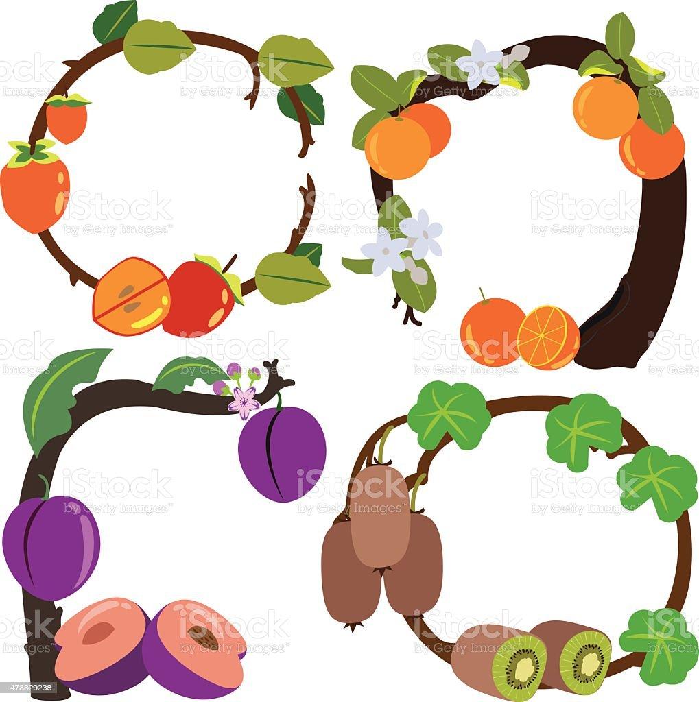 Kiwi persimmons arance e bordeaux illustrazione royalty-free