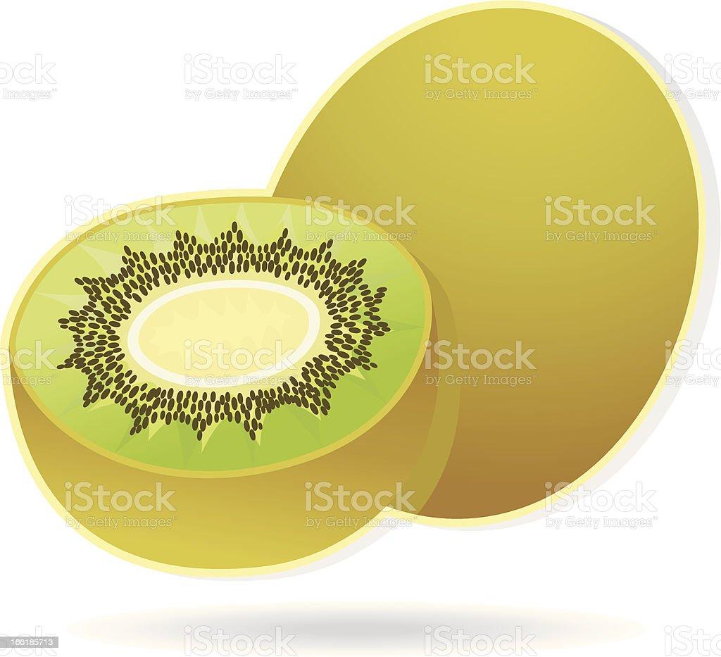 kiwifruit. vector art illustration