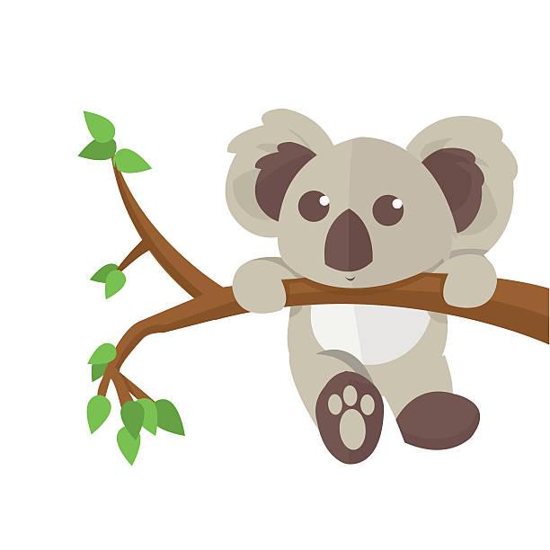 Koala Clip Art, Vector Images & Illustrations - iStock
