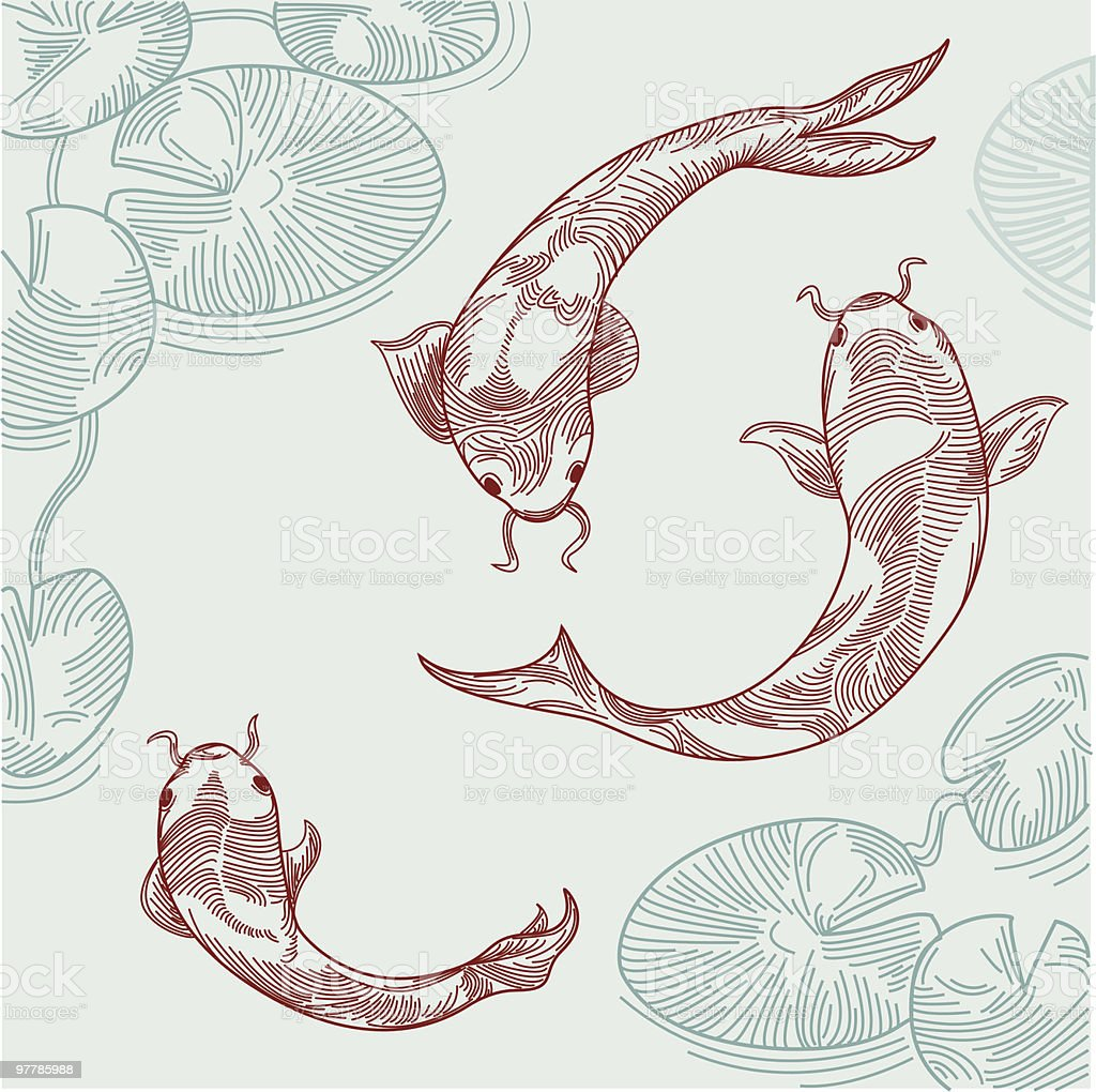 Koi fish in pond stock vector art 97785988 istock for Koi fish pond drawing