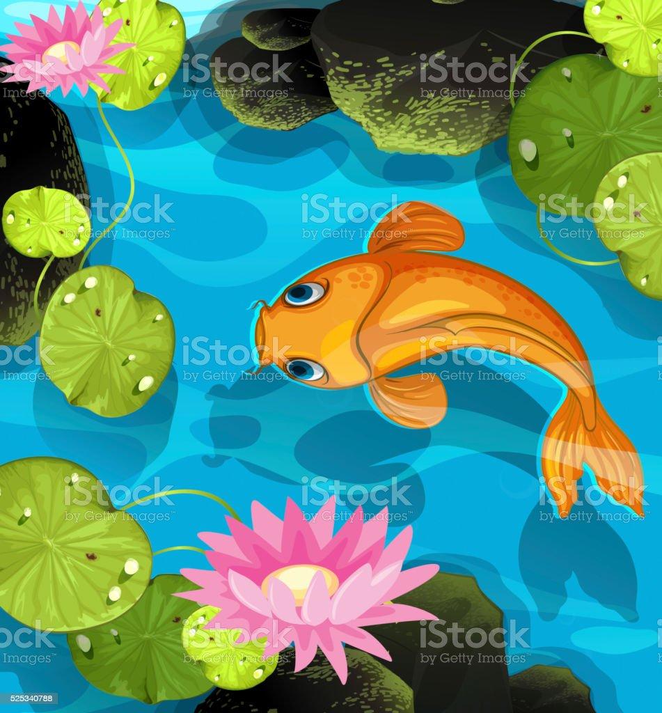 Koi swimming in the lotus pool vector art illustration