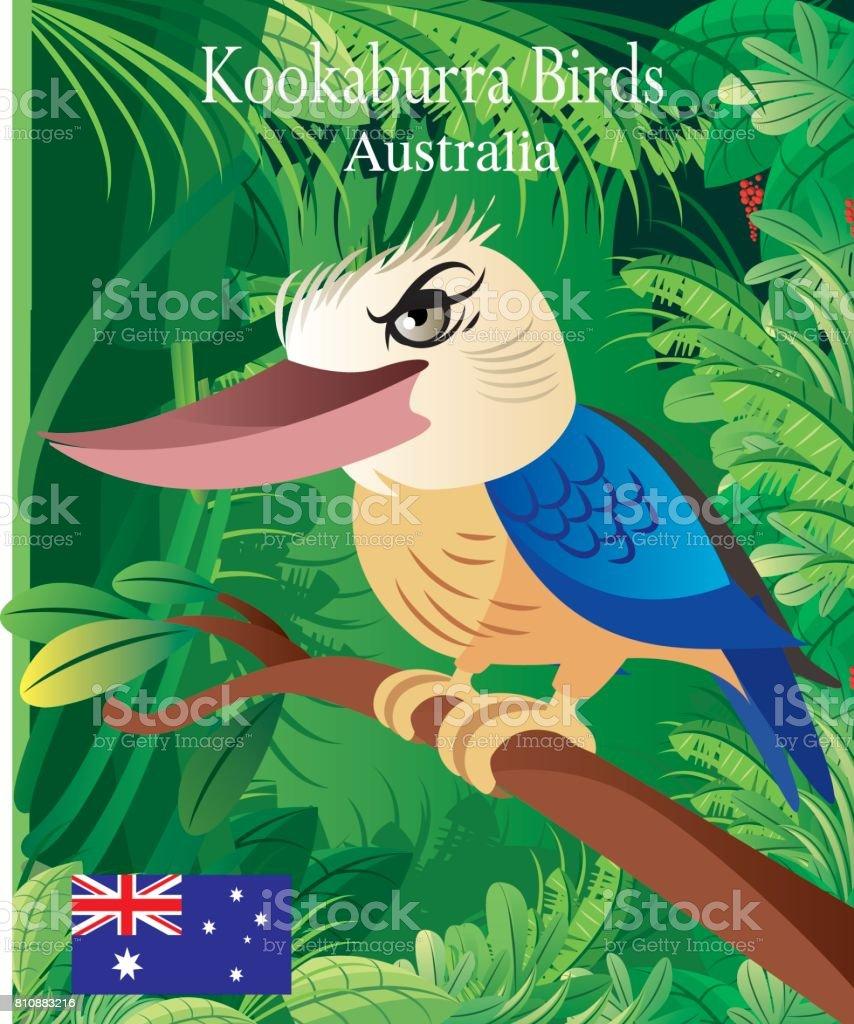 Kookaburra Birds vector art illustration