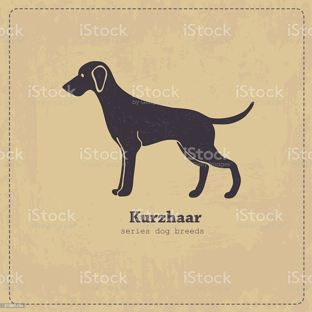 Kurzhaar dog standing in profile stylized silhouette on shabby...