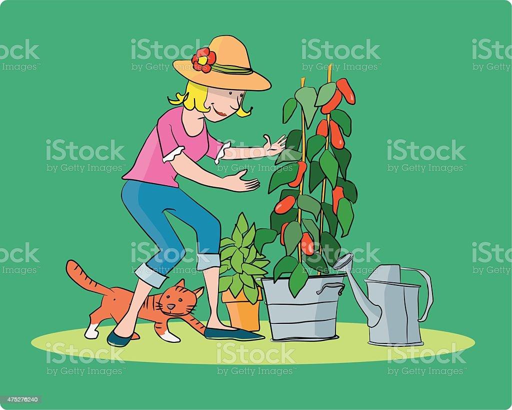 La Giardiniera vector art illustration