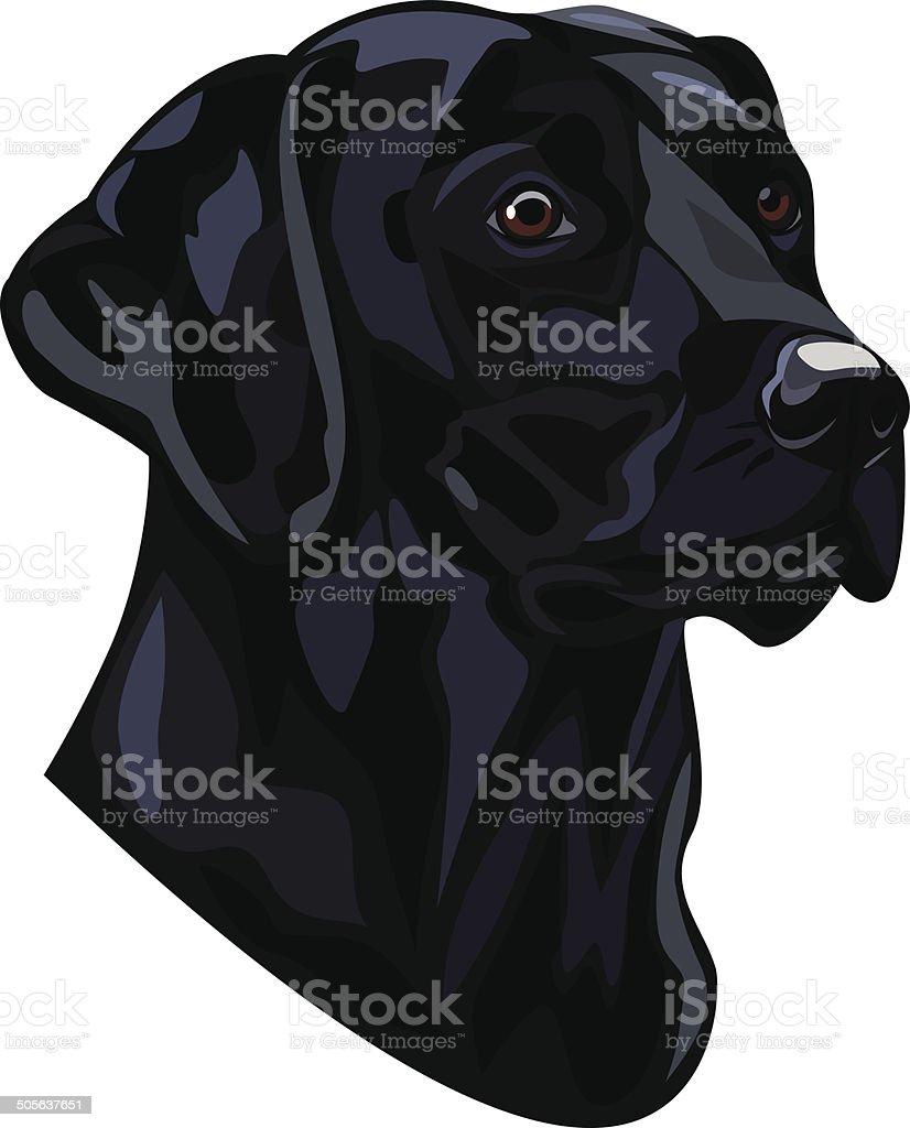 Labrador vector art illustration