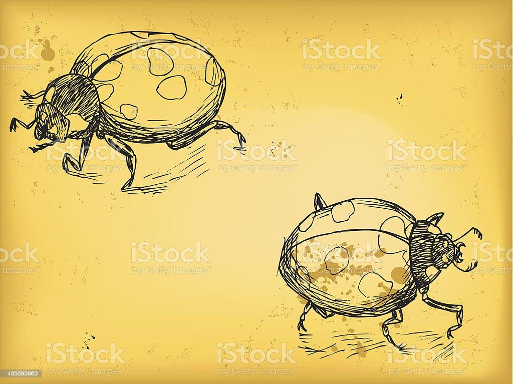 Lady bug royalty-free stock vector art