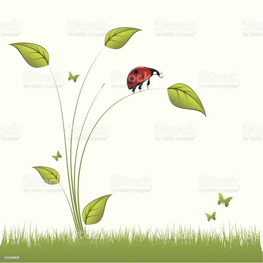 Ladybird in the grass royalty-free stock vector art