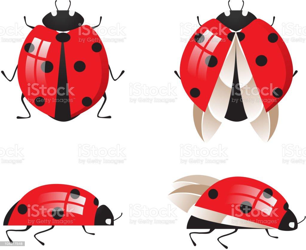 ladybirds royalty-free stock vector art