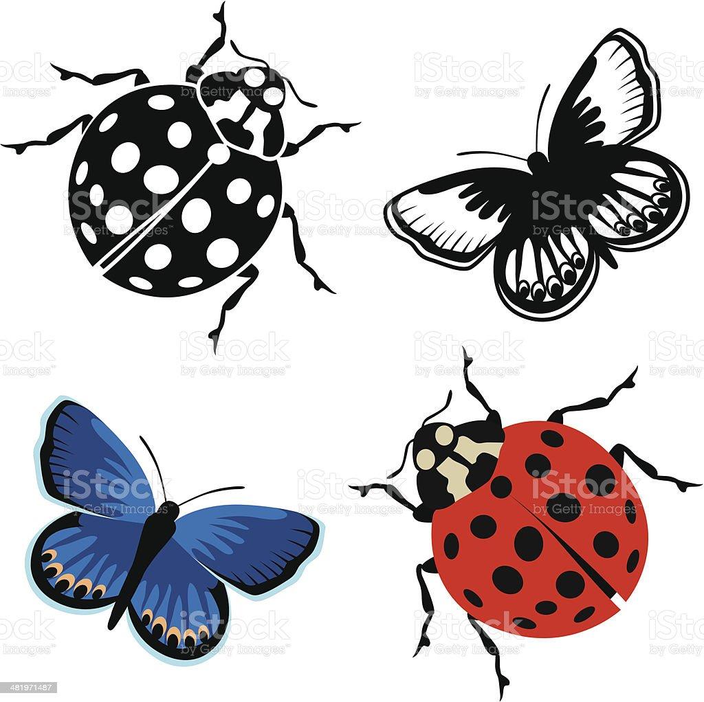 ladybug and Karner blue butterfly vector art illustration