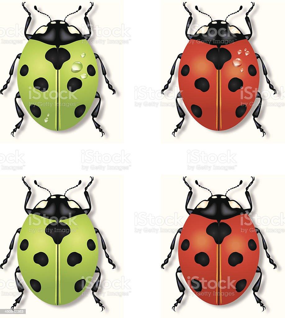 Ladybug Icons royalty-free stock vector art
