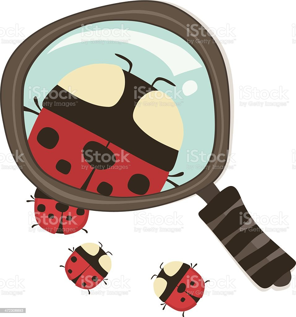 Ladybug Magnifying Glass royalty-free stock vector art