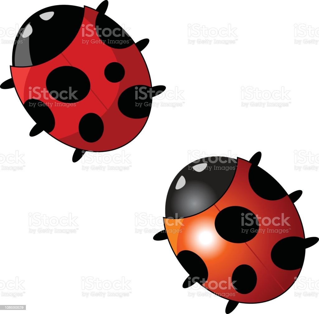 Ladybug royalty-free stock vector art