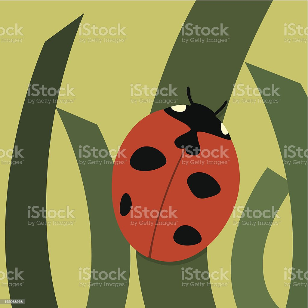 Ladybug royalty-free stock vector art