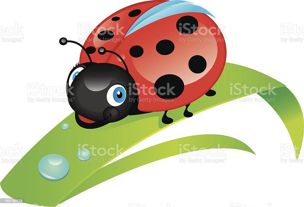 ladybug vector art illustration