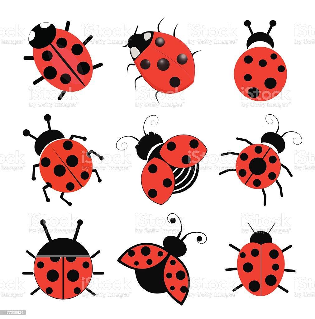 Ladybugs vector art illustration