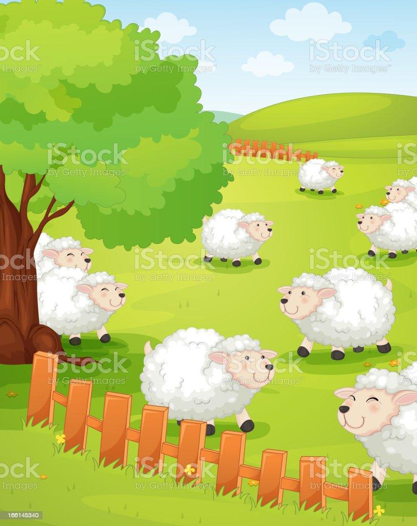 Lamb on green grass+ royalty-free stock vector art