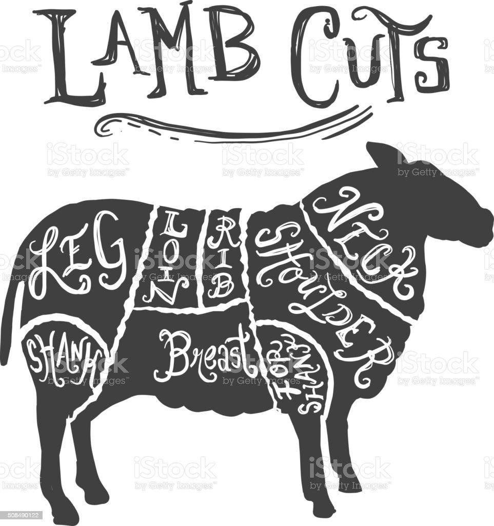 Lamb or sheep cuts butcher diagram vector art illustration