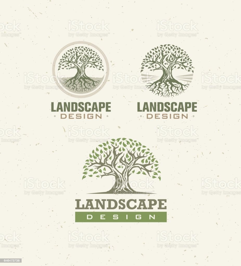 Landscape Design Creative Vector Concept. Tree With Roots Inside Circle Organic Sign Set On Craft Paper Background. vector art illustration