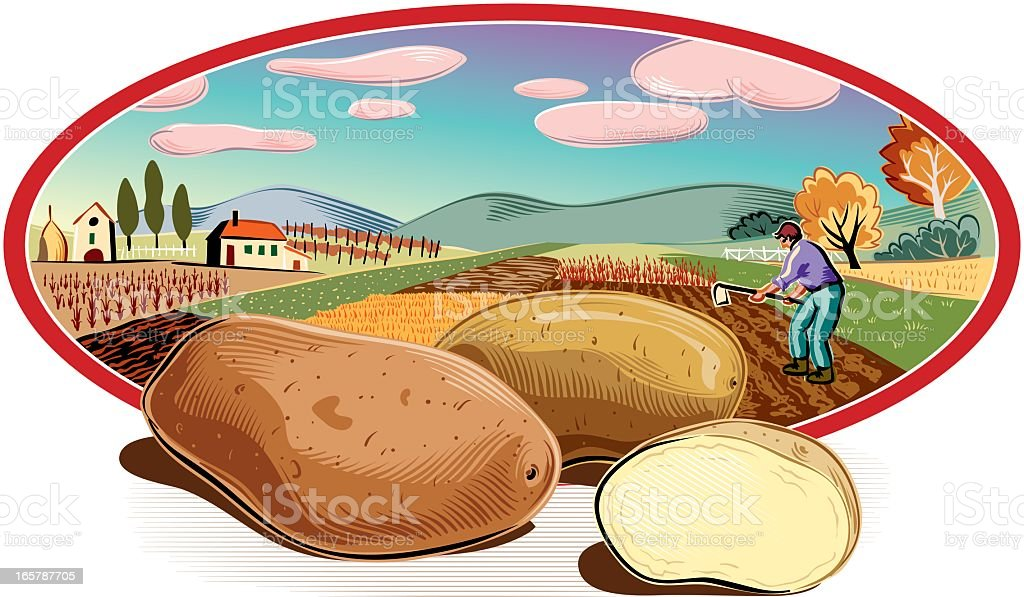 landscape in oval frame and patatoes royalty-free stock vector art